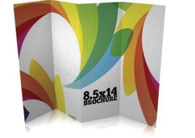 8.5 x 14 Brochure Printing