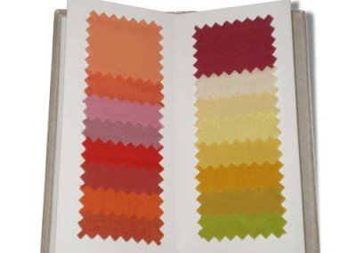 Color Booklet