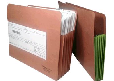 Expandible Folders