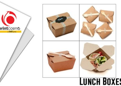 Lunch Packaging Boxes