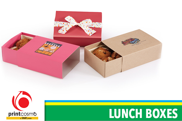 What is the importance of Lunch Boxes in our life