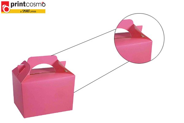Party Packaging Boxes